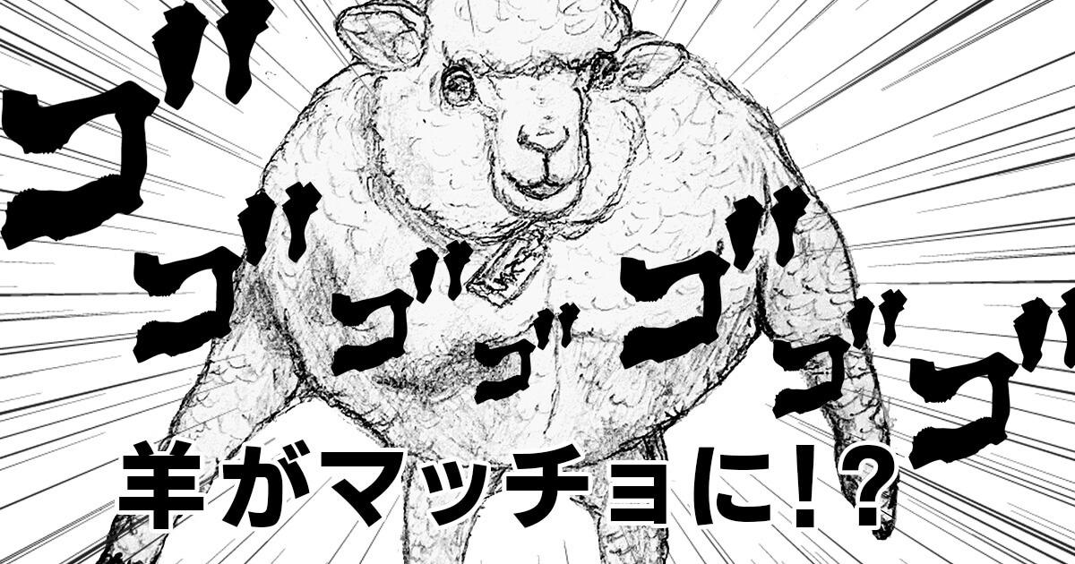 羊がマッチョに!?