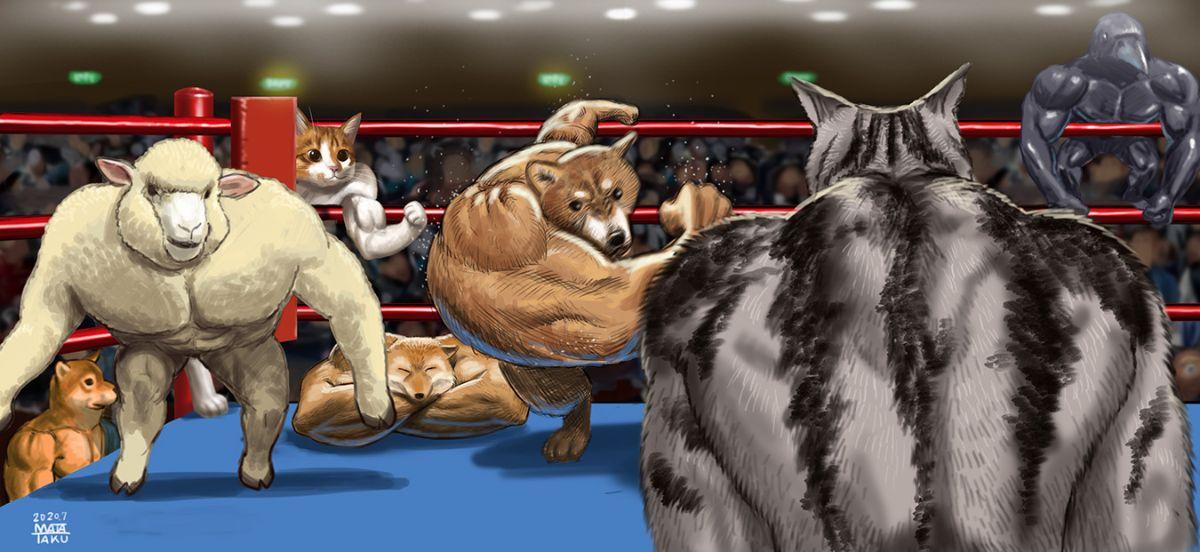 マッチョ羊が追加されたマッチョ動物達の対戦