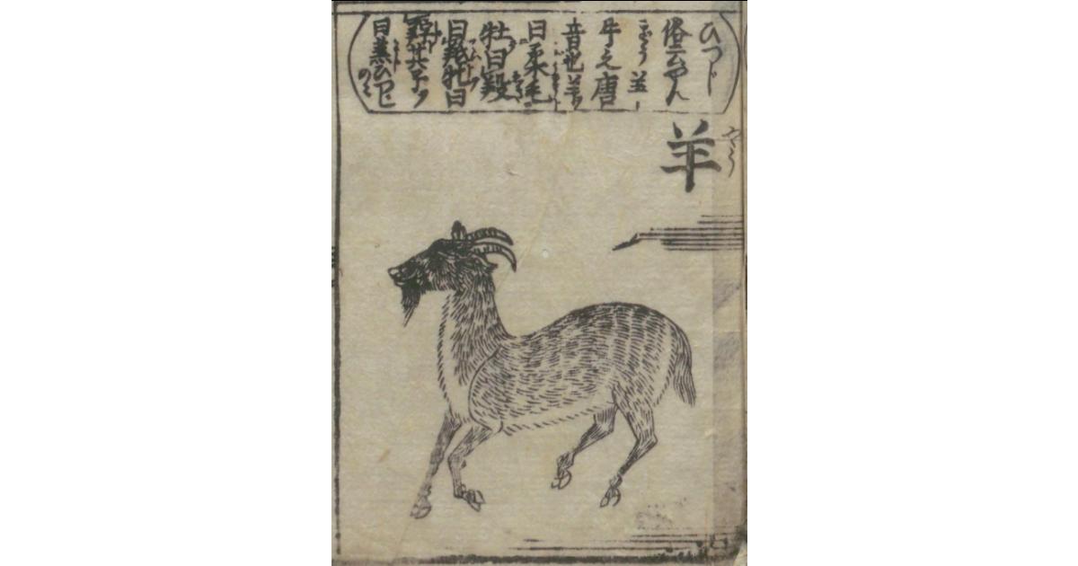 江戸時代の羊絵