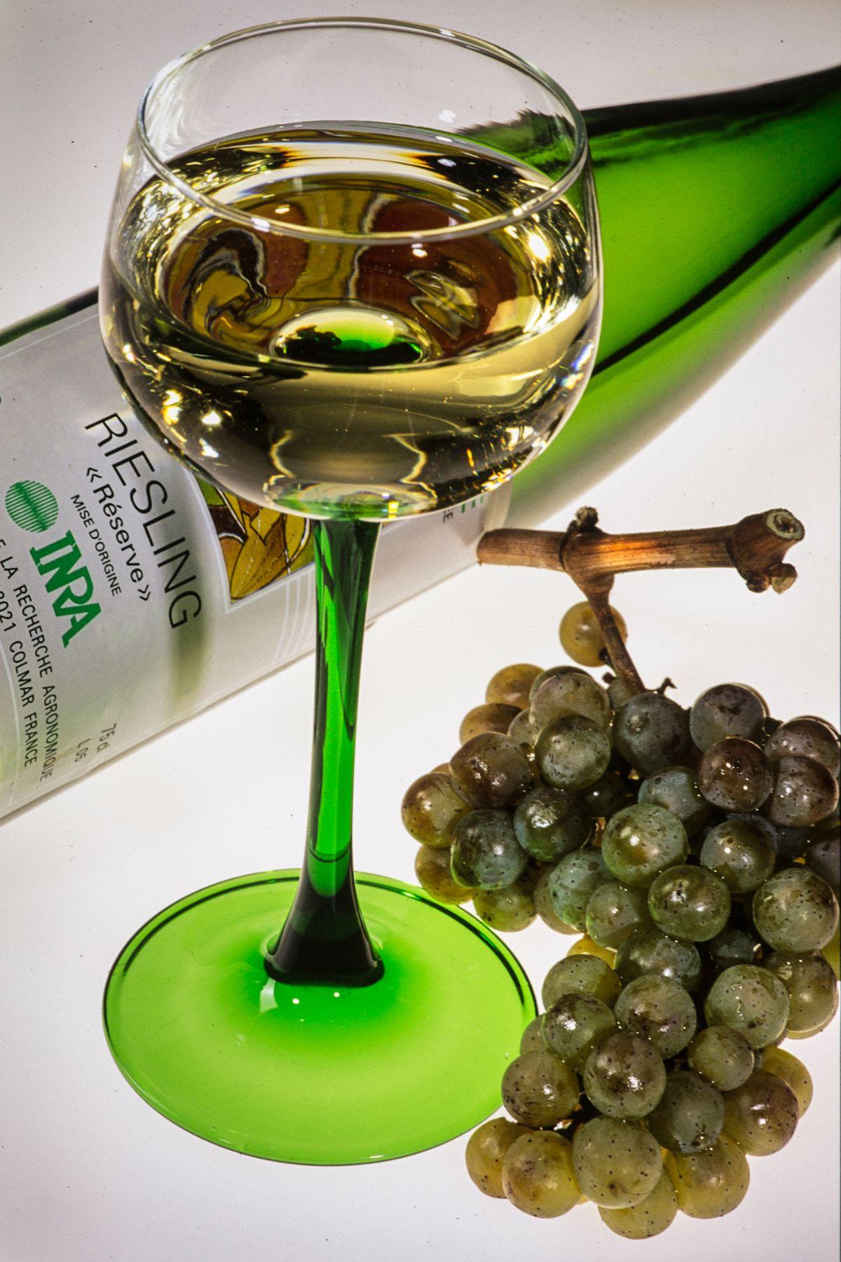 アルザス地方の白ワイン