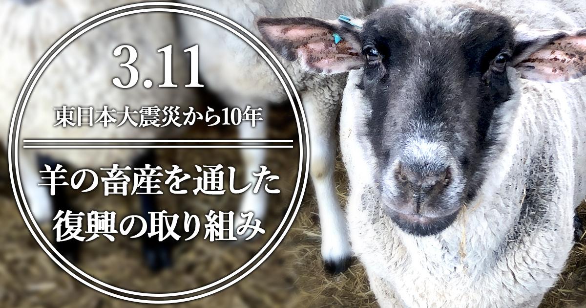 3.11東日本大震災から10年―羊の畜産を通した復興の取り組み
